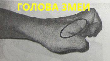 Голова змеи в китайском суставном массаже