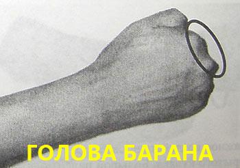 Голова барана в китайском суставном массаже